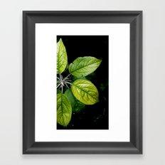 Backyard Leafs Nature Framed Art Print