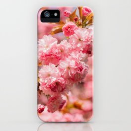 Spring Flowers | Cherry Blossoms iPhone Case