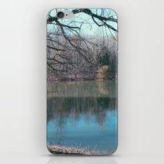 Lake Bed iPhone & iPod Skin