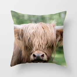 Portrait of a cute Scottish Highland Cattle Throw Pillow