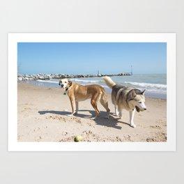 helens dogs  Art Print