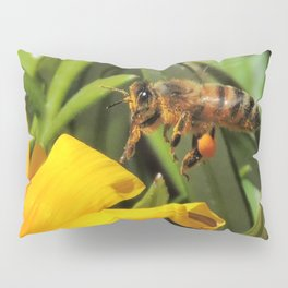 Pollen Express 221 Pillow Sham