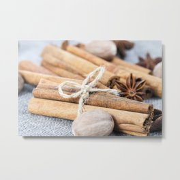 nutmeg and cinnamon Metal Print