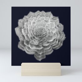 Succulents collage 2 Mini Art Print