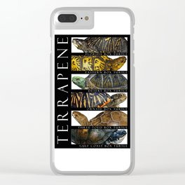 Box Turtles of North America Clear iPhone Case