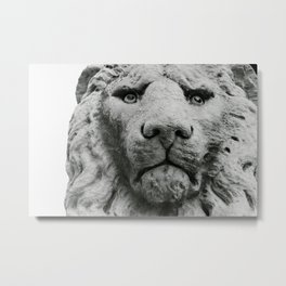 Sculpture of a medieval lion head of stone (Italy) B/W Photography Metal Print