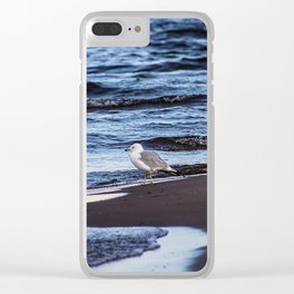 Seagulll by the Waves Clear iPhone Case