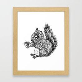 Squirrel in black & white Framed Art Print