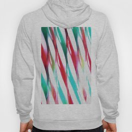Retro Twists Hoody