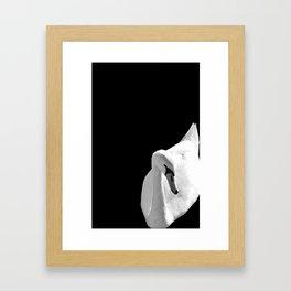Swan On Black Framed Art Print