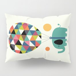 Fly High And Dream Big Pillow Sham