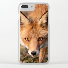 Fox Portrait I Clear iPhone Case