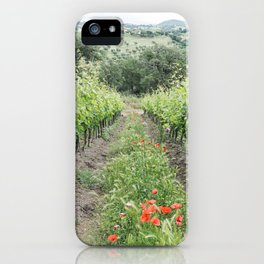 Vineyard in Tuscany, Italy  iPhone Case