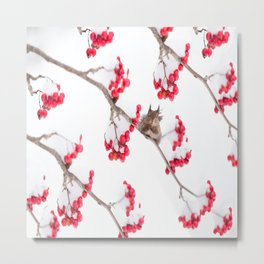 Cute Squirrel With Red Rowan Berries On A White Background #decor #society6 #buyart Metal Print