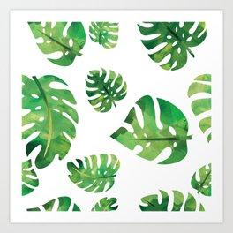 Monstera Plant Art Print