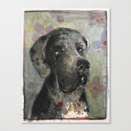 Esra Great Dane Canvas Print