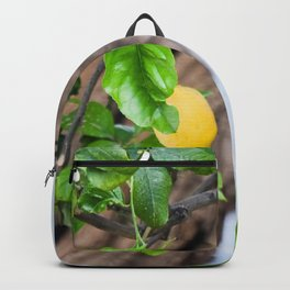 Italian Lemon Tree Backpack
