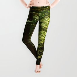 On A Road To The Rainforest Leggings