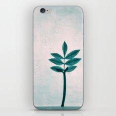 blue fall iPhone & iPod Skin