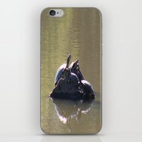 turtles iPhone & iPod Skins featuring Turtles by Bella Lilly Photography