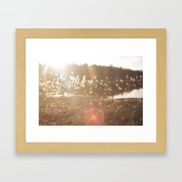 Haze Framed Art Print