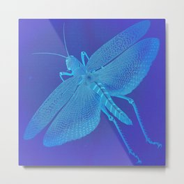 Turquoise Grasshopper Metal Print