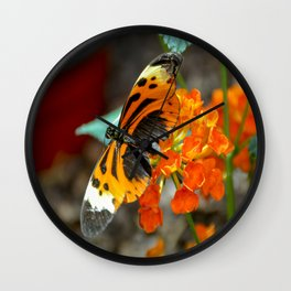Numata Longwing Butterfly Wall Clock