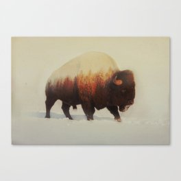 Bison (V3 Series) Canvas Print