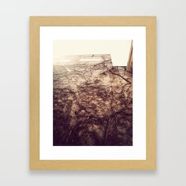 Wall Crawler Framed Art Print