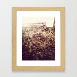 Wall Crawler Framed Art Print