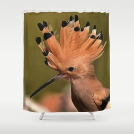 Beautiful Hoopoe Bird With Crown Of Feathers Shower Curtain