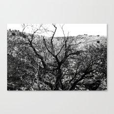 Castle Tree Canvas Print