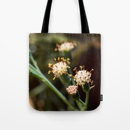Balsamico white flowers Tote Bag