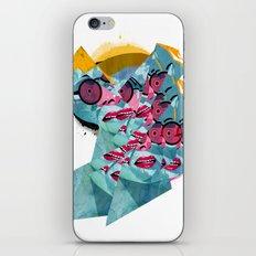 031112 iPhone & iPod Skin