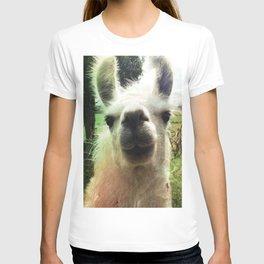 Blanche nose kiss T-shirt
