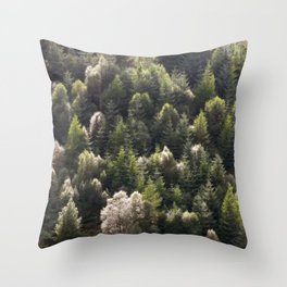 coed Throw Pillow