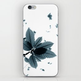 chestnut leaves iPhone Skin