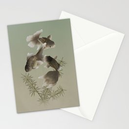 Young Dragon Eyes Stationery Cards