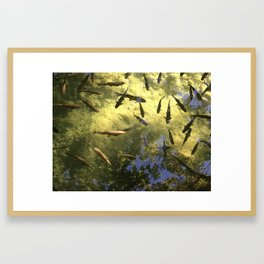 Green with fish Framed Art Print