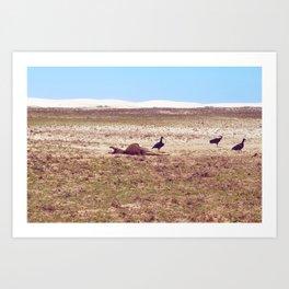 Vultures on Donkey Art Print
