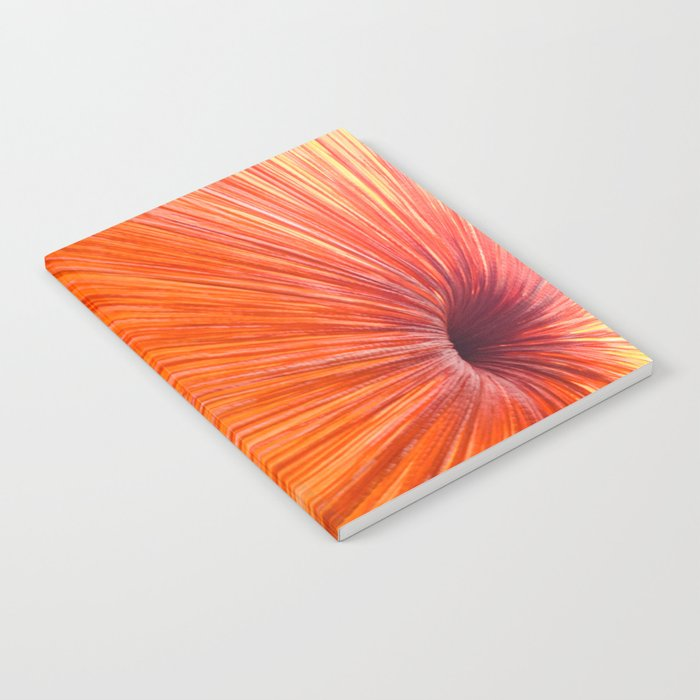 Orange and Red Notebook