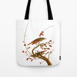 Hermit Thrush Bird Tote Bag