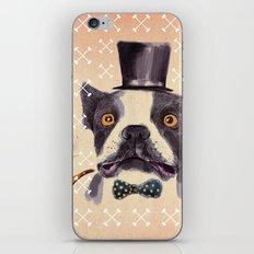 Mr. Bulldog II iPhone & iPod Skin