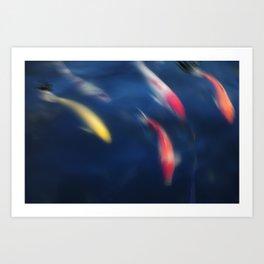 Koi fish in a pond Art Print