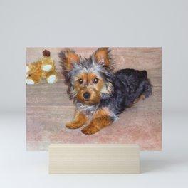 Silky Terrier Puppy - rendered as watercolor Mini Art Print