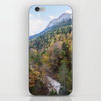 forrest iPhone & iPod Skins featuring Forrest  by Veronika