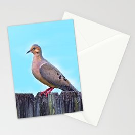 Mourning Dove on a Fence Stationery Cards