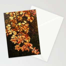 Autumn Leaves Display Stationery Cards