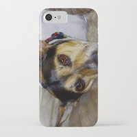 terrier iPhone & iPod Cases featuring Terrier by Rick Kirby
