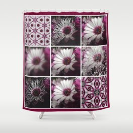 White and Magenta African Daisies Graphic Collage Shower Curtain
